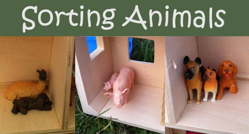Farm Animals Play