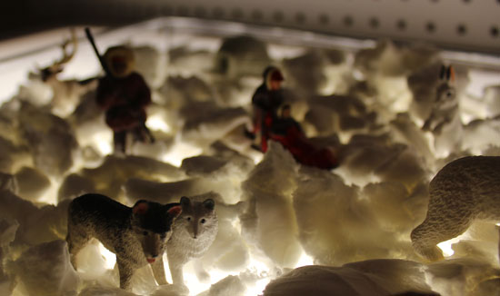 Snow-wonderland
